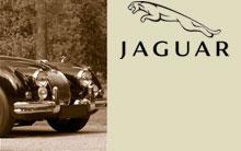 _jaguar
